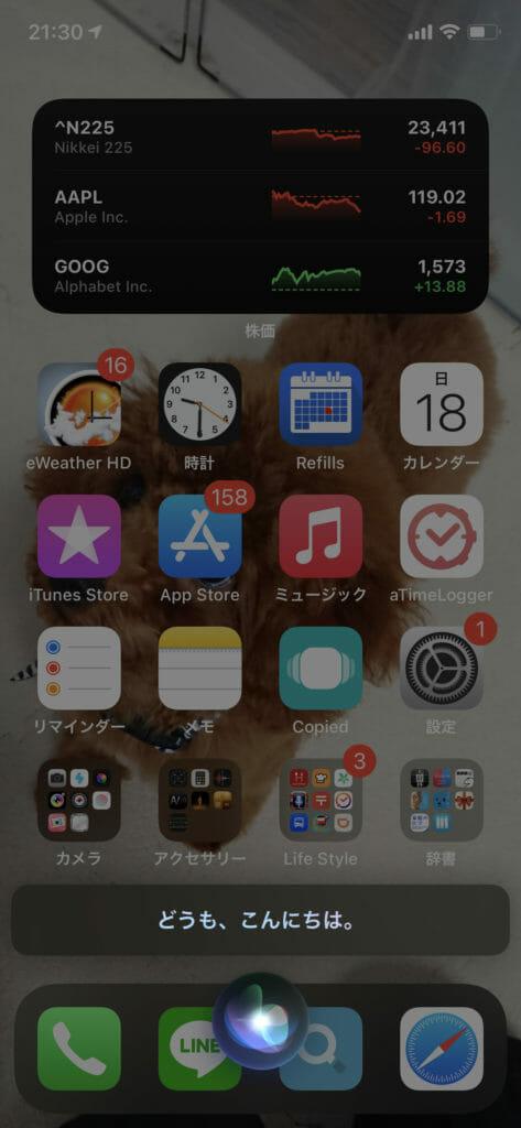iOS14 Siri01