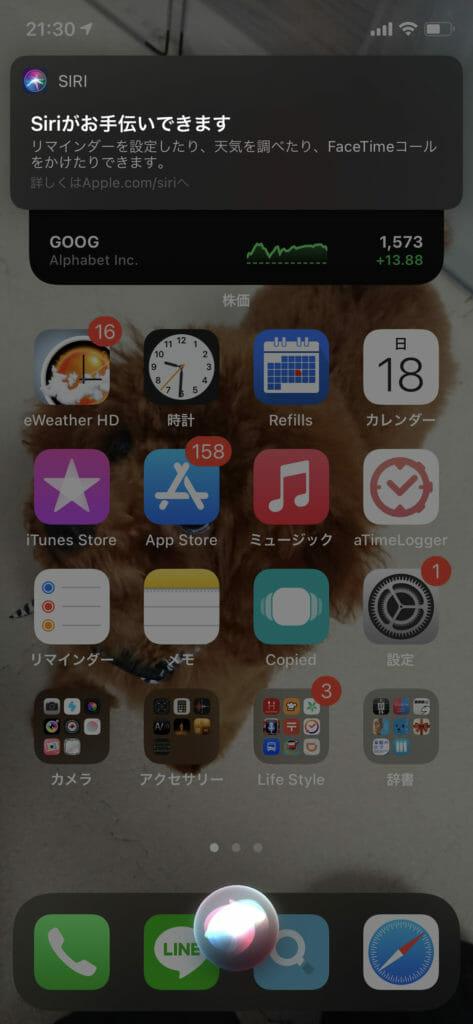 iOS14 Siri02