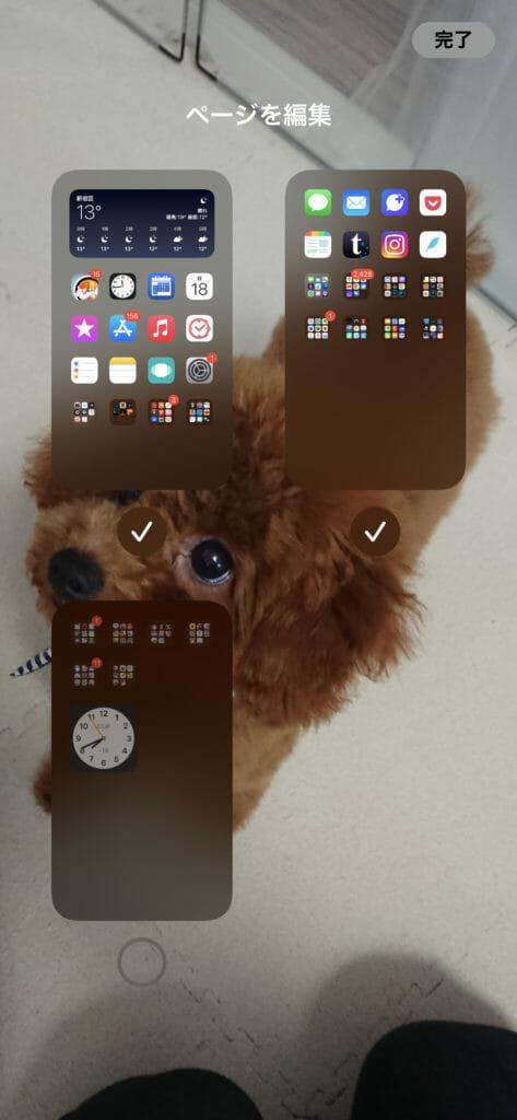 iOS14 Hide home screen01