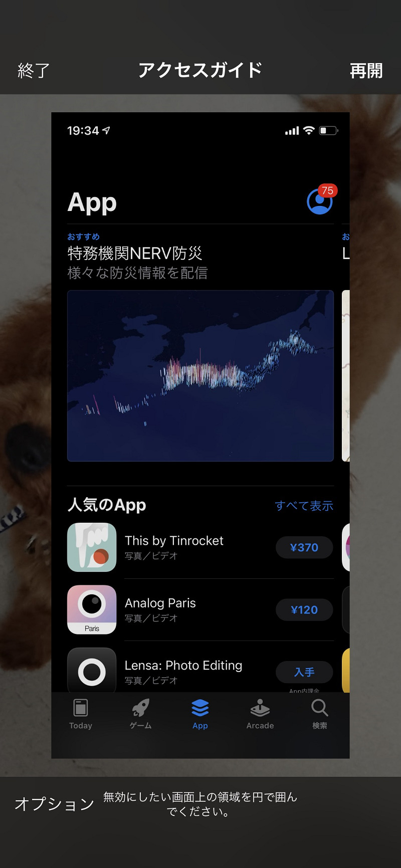 iOS AccessGuide 12